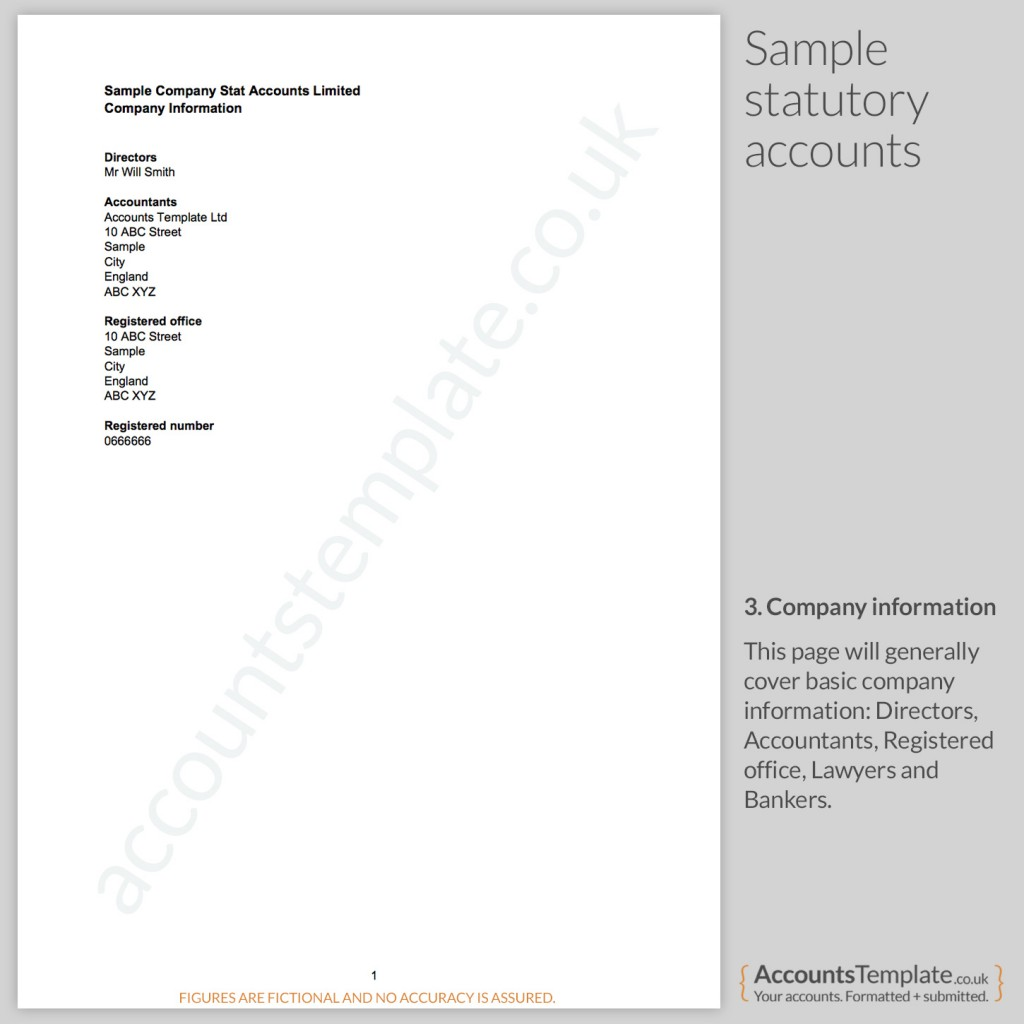 Sample Company information from Statutory Accounts