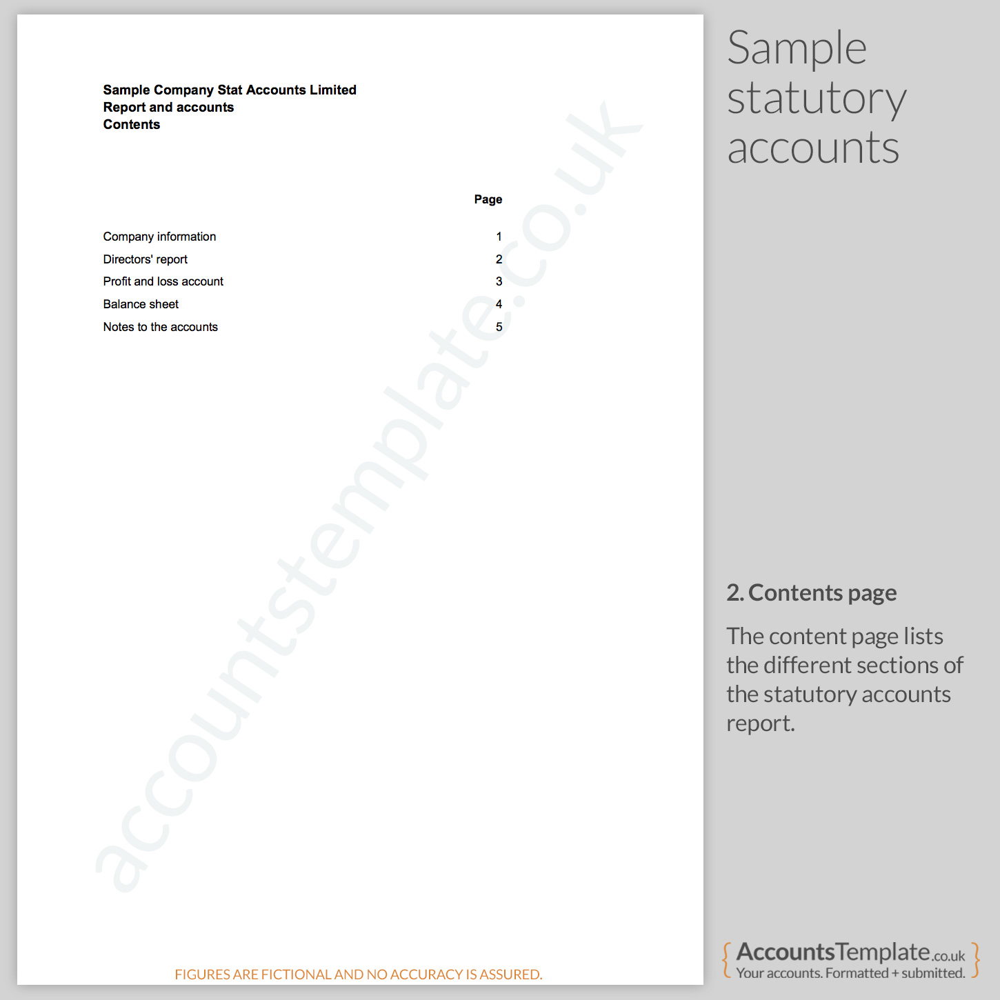 Sample Page: A Guide To The Statutory Accounts Format