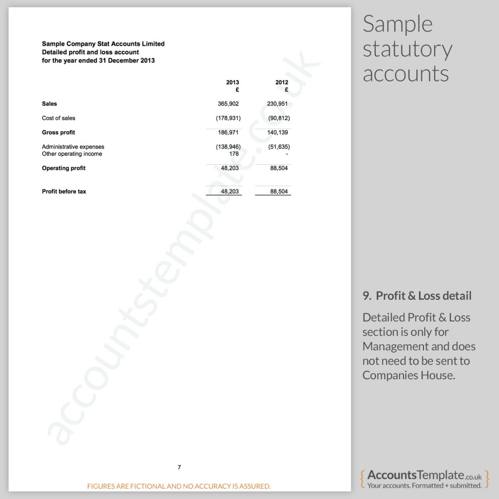 Sample Profit and Loss Report from Statutory Accounts