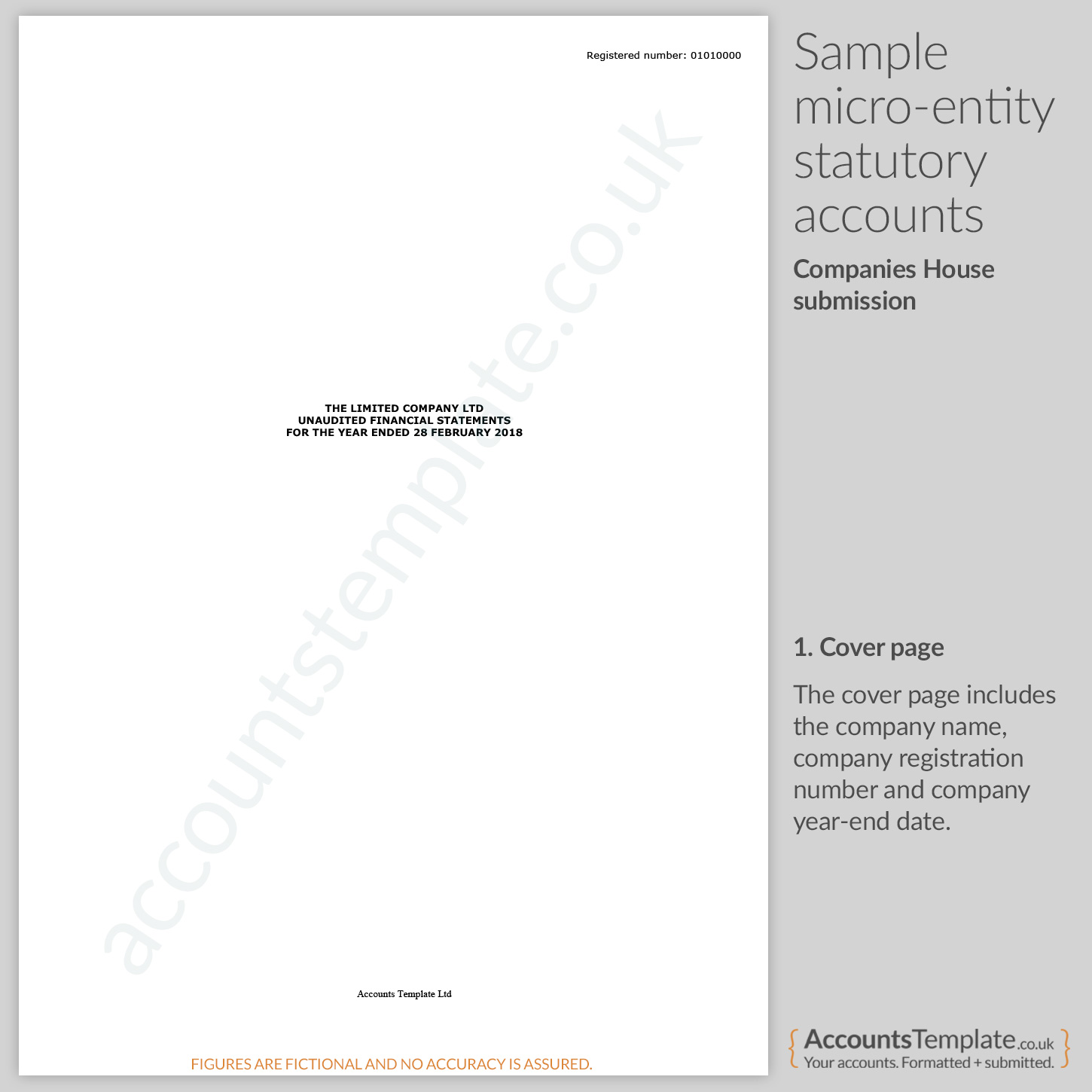 a guide to micro entity statutory accounts format accounts template