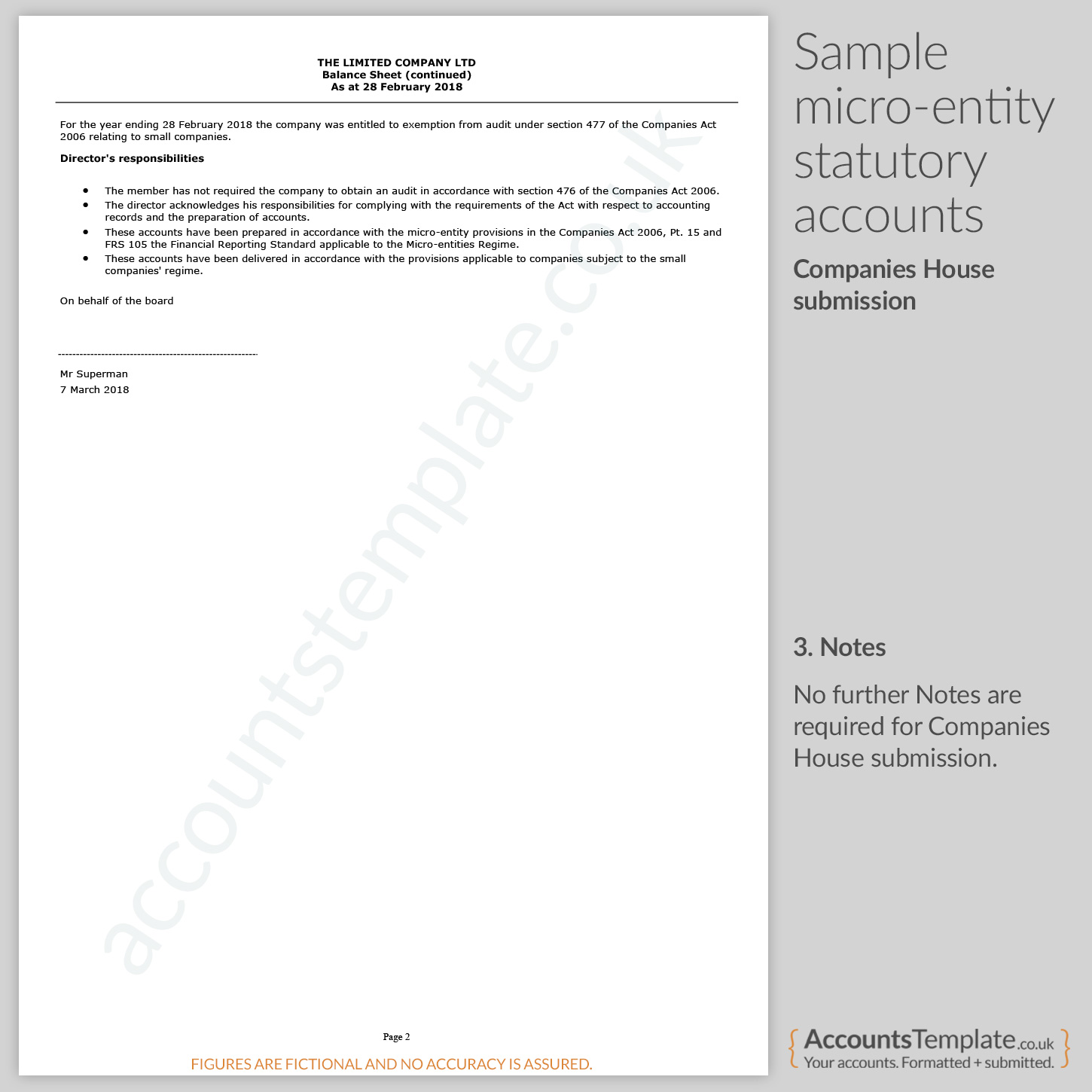 A guide to Micro-Entity statutory accounts format | Accounts Template