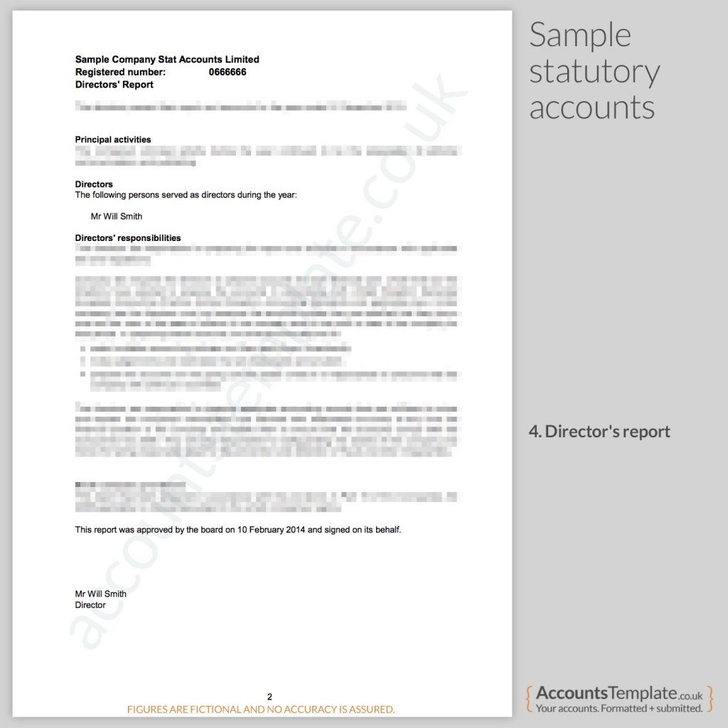 Sample Director's Report from Statutory Accounts